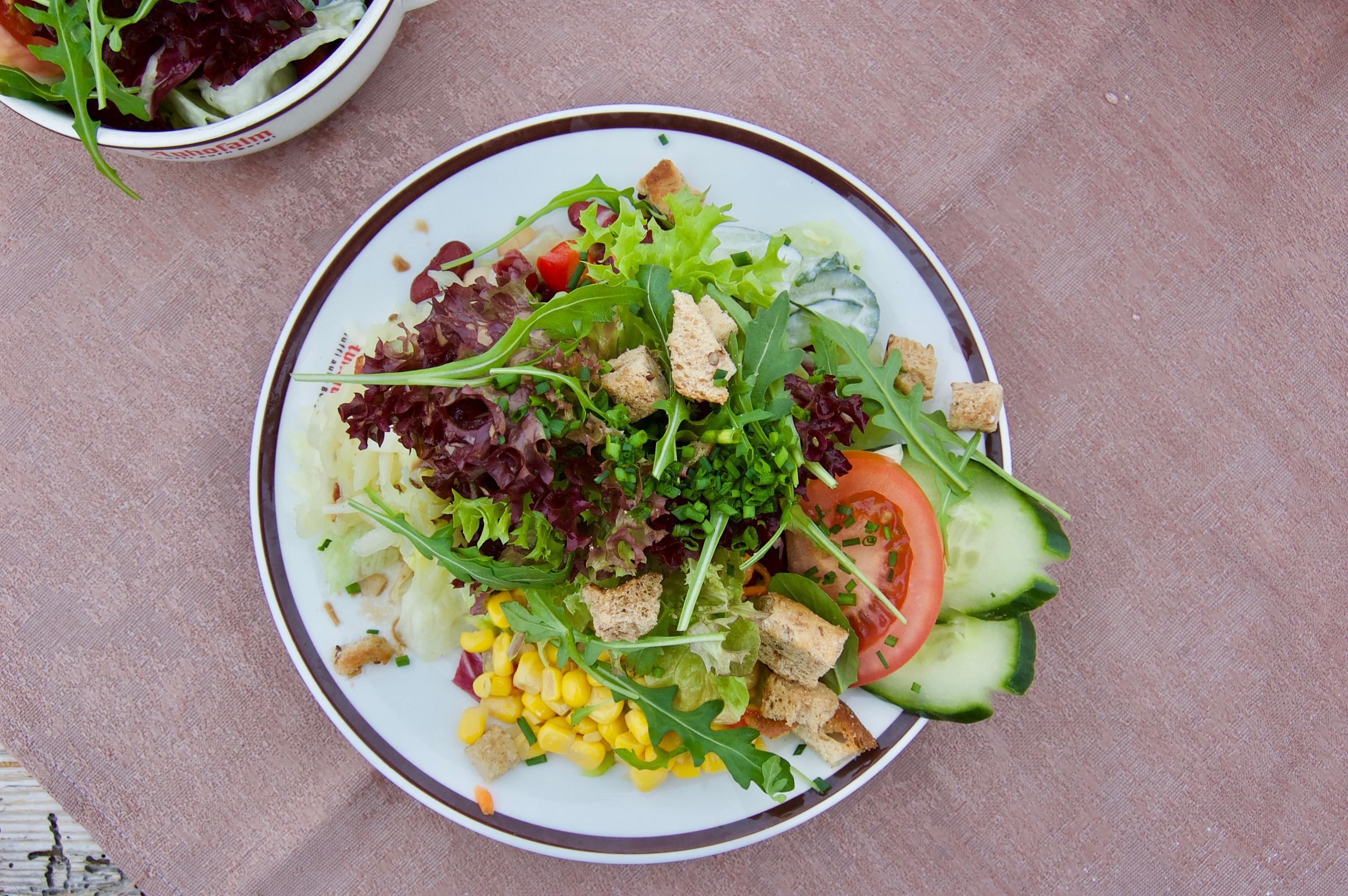 vegan eten op skivakantie